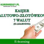 Kasjer walutowo-złotówkowy 7 walut (warsztat e-learning)