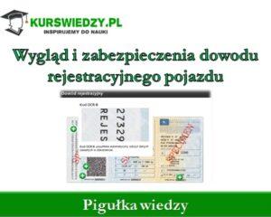 Wygląd i zabezpieczenia dowodu rejestracyjnego pojazdu (Pigułka wiedzy)