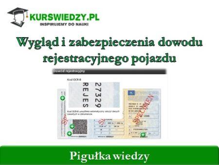 zabezpieczenie dowod rejestracyjny | KursWiedzy.pl