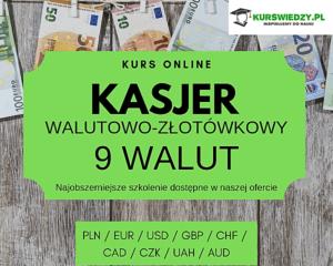 Kasjer walutowo-złotówkowy 9 walut