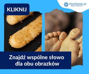 portwiedzy paluszki | KursWiedzy.pl