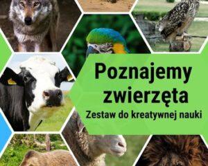 Poznajemy zwierzęta. Kreatywny zestaw do nauki.