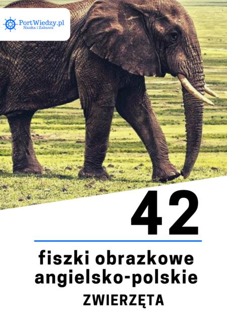 fiszki obrazkowe   KursWiedzy.pl